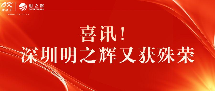 """因为专业,所以出色丨深圳明之辉荣获""""深照奖""""景观及道路照明维护五大奖项"""